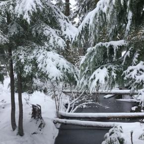 giverny homestead winterupdate